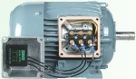 Murrelektronik interference-suppression